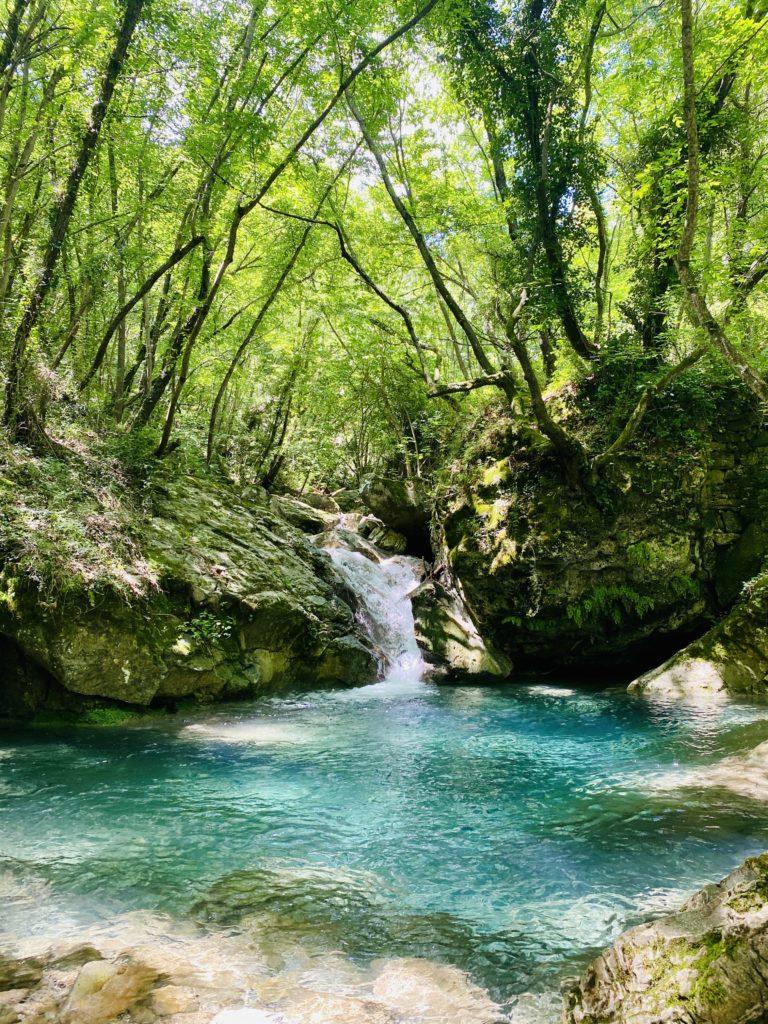 Uno dei tanti laghetti nel bosco - Lecchiore