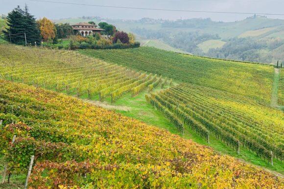 Langhe in autunno: 5 + 1 idee per scoprire il Piemonte